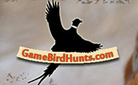 Game Bird Hunts
