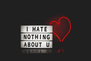 I Hate Nothing About U
