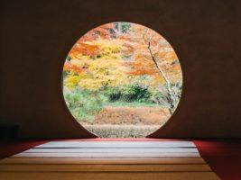 Circle Window