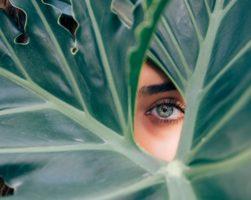 Blue Eye Green Palms